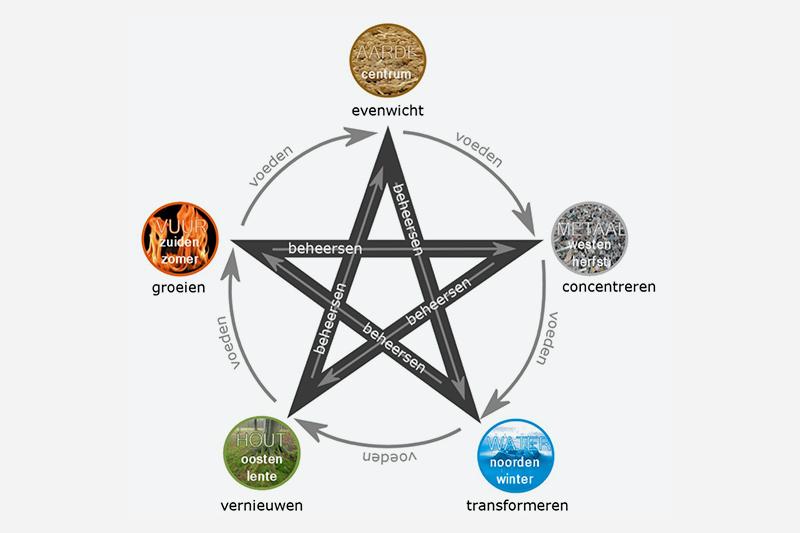Breng je leven meer in balans met de 5 transformatie-elementen